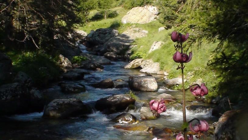Vallée des merveilles- Mercantour