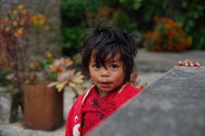 Nepal-Belvédère des Annapurnas -Toussaint 2016