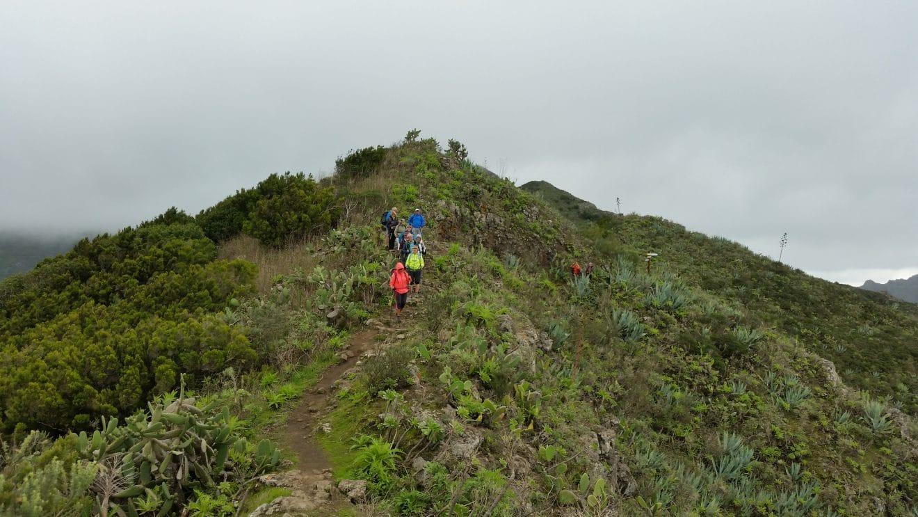 Tenerife, paradis de la randonnée