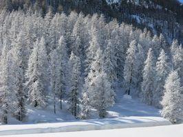 Le Queyras sous la neige - 5 jours /4 nuits