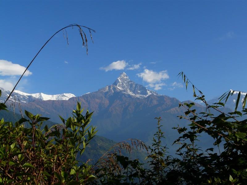 Le belvédère des Annapurnas et Chitwan