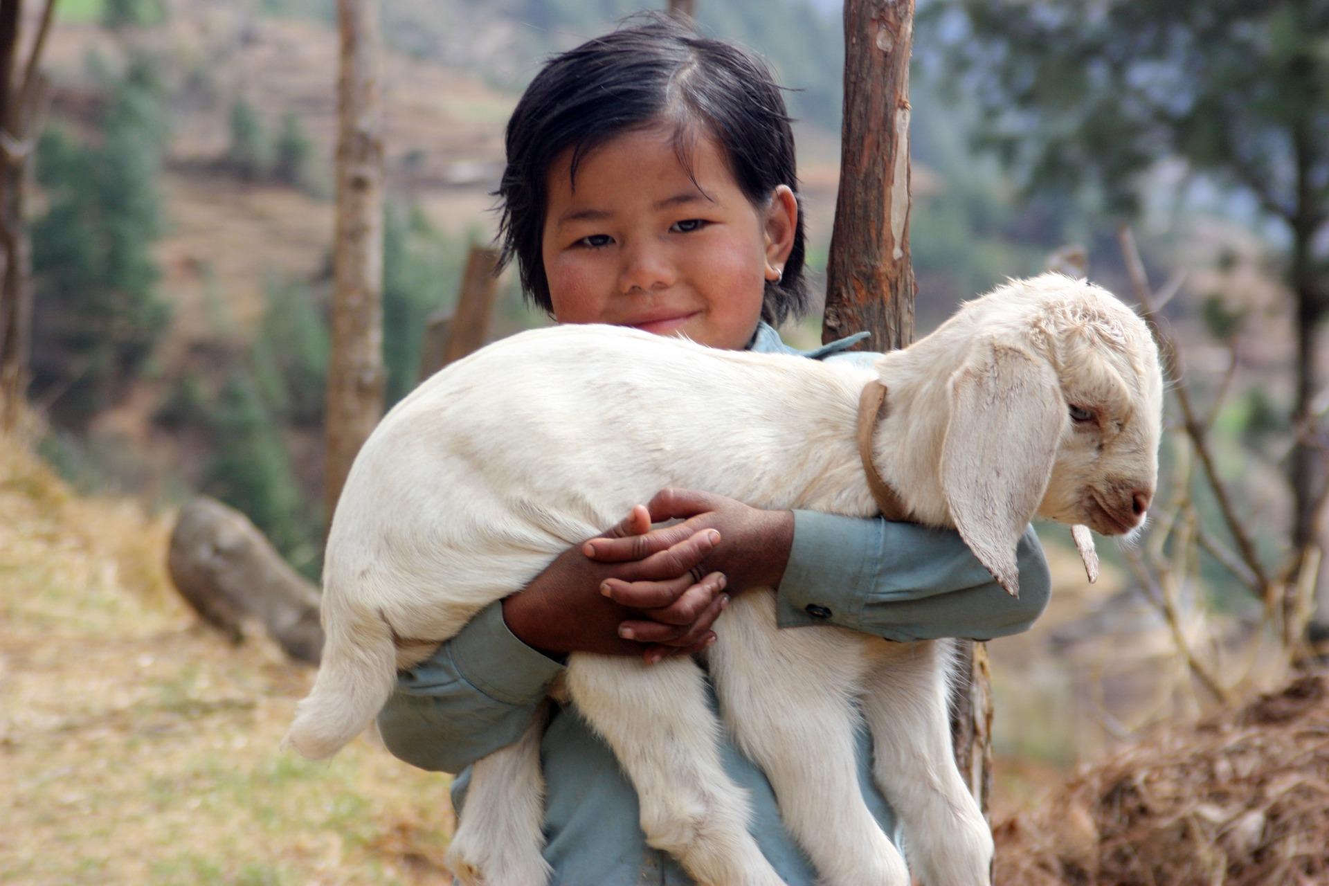 Trek Népal à vos dates à partir de 2 personnes